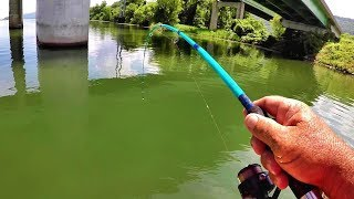 Fishing Under Bridges With Live Bait