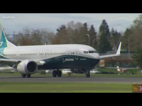 Boeing's 737 Max 8 and 9 aircraft grounded