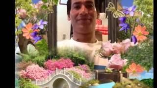 new garhwali song sohan rawat