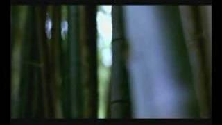 Robert McNamara - The Palace