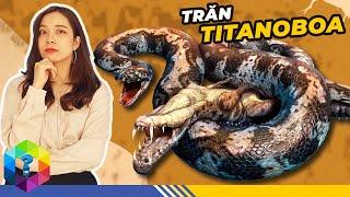 TITANOBOA - Loài Trăn Siêu To Khổng Lồ 🐍 T-rex Cũng Chỉ Là Muỗi
