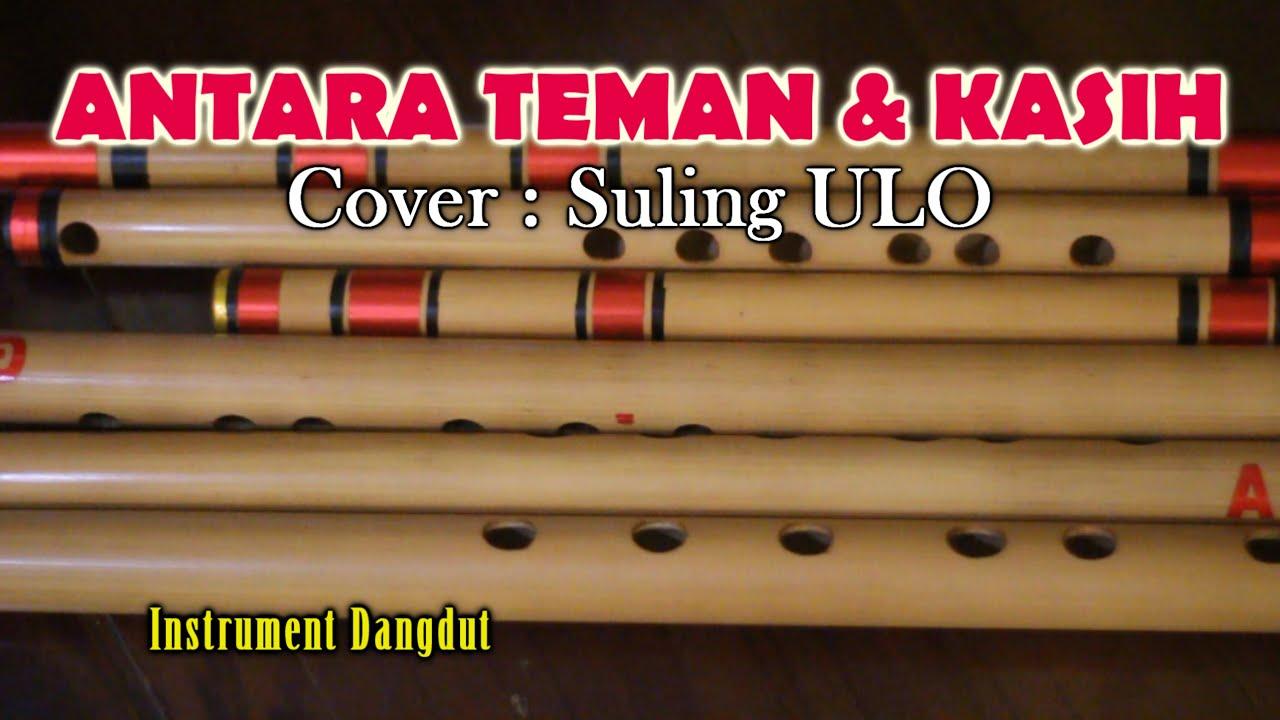 INSTRUMENT DANGDUT - ANTARA TEMAN DAN KASIH cover : suling