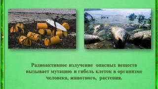 Глобальные экологические проблемы(Автор - Библиотека № 15 МБУК