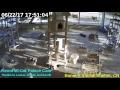 Animal Shelter Bonaire - Cat Palace