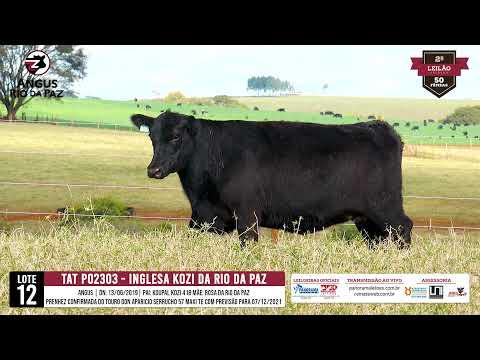 LOTE 12   TAT PO2303 INGLESA KOZI DA RIO DA PAZ TE - Prod. Agência e TV El Campo
