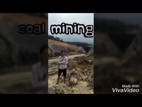 Cv.Bara Banua Jaya. (Coal Mining,Coal Trading and Contractor)