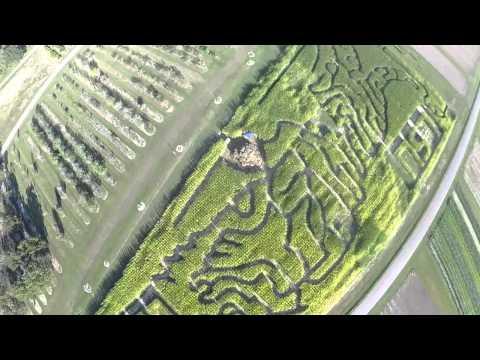 LSU Corn Maze Teaser 2