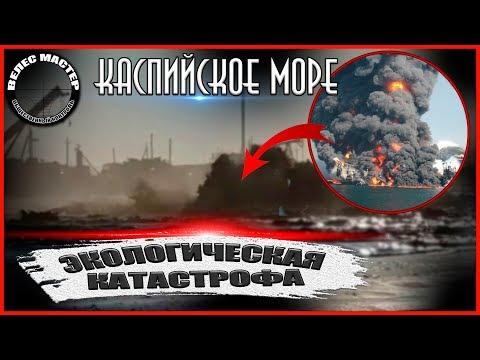 Экологическая катастрофа в Каспийском море // ВЕЛЕС мастер