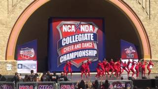 University of Louisville Ladybird Dance Team 2016 *NDA National Champions*