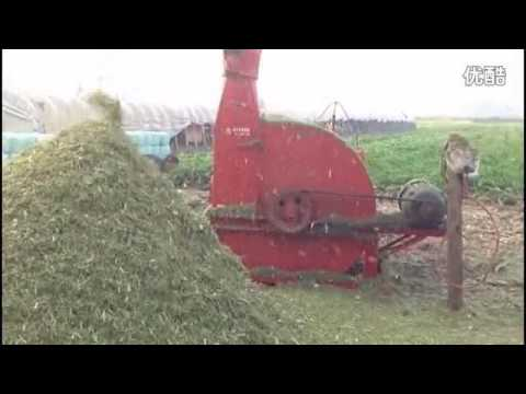 Green corn stalk chaff cutter forage cutter agricultural waste crop chopper machine