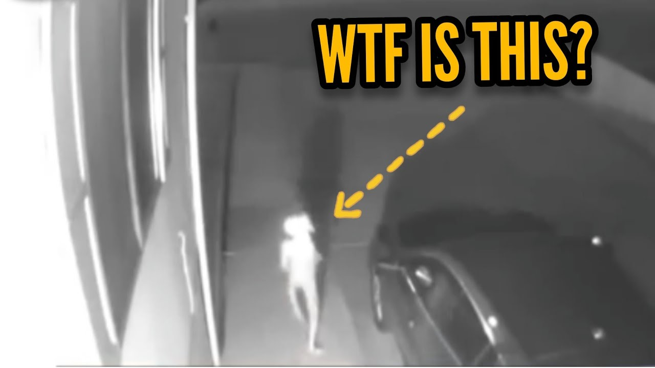 'Alien' caught walking through driveway!?