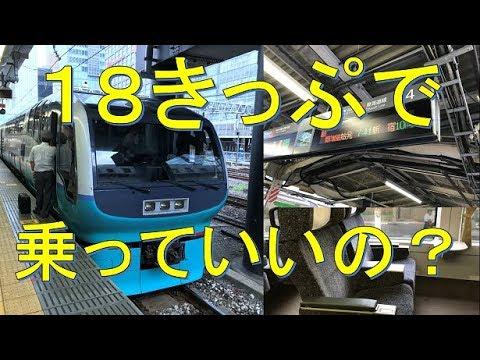 【青春18きっぷで特急グリーン!?】251系おはようライナー新宿26号が豪華すぎた。小田原→新宿 乗車記