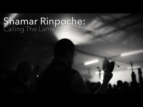 Shamar Rinpoche: Calling The Lama From Afar