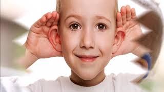 Program yang menyuguhkan berita atau informasi menarik dari dunia entertainment, di dalam dan luar n.