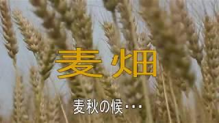ふた昔・・・いやもっと前ですか、オヨネーズの「麦畑」は 長渕 剛さん...