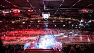 Hockey Arena Goal Song; XL - Fluxland Live