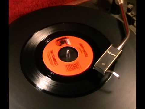 The Standells - Dirty Water - 1965 45rpm