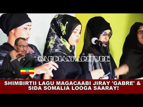 HEESTII GUUMEEYSIGA & SHIMBIRTII 'GABRE' LOOGA SAARAY SOMALIA | 'SHIDDA NALA JOOGTAAY BAX'