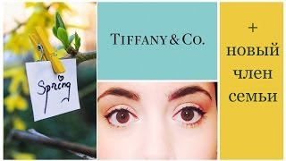 ВЛОГ- Tiffany&CO, травма + программа канала на апрель!!!