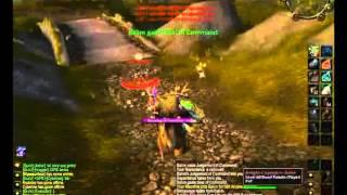 Birdman - Balance Druid (Vanilla WoW PvP)