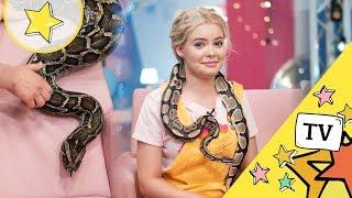 Węże w naszym programie - Musicie to zobaczyć