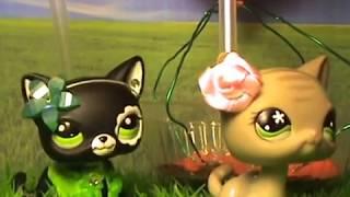 LPS сериал: Необычный дар (4 серия) / Unusual Talent (episode 4) 猫