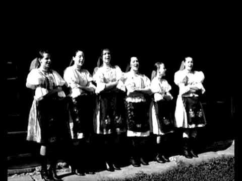 Do saflika - zeny a LH z Fintic - 1951 (Saris)