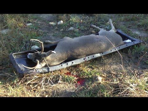 Opening Day Michigan Whitetail Deer Gun Hunt!