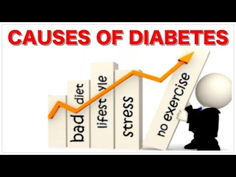causes-of-diabetes-what-is-insulin?-and-what-is-blood-sugar-glucose?