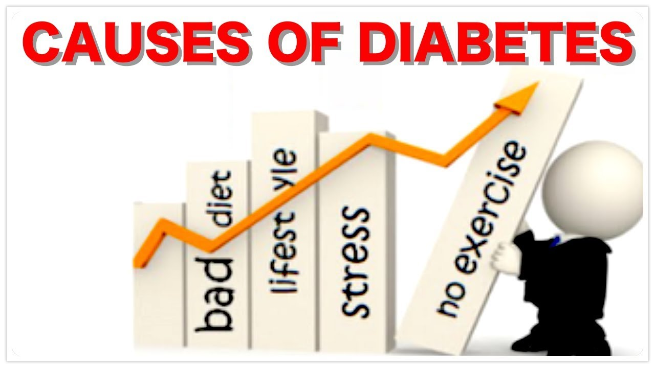 What is insulin