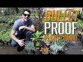 Bullet Proof Plant Combo for Full Sun