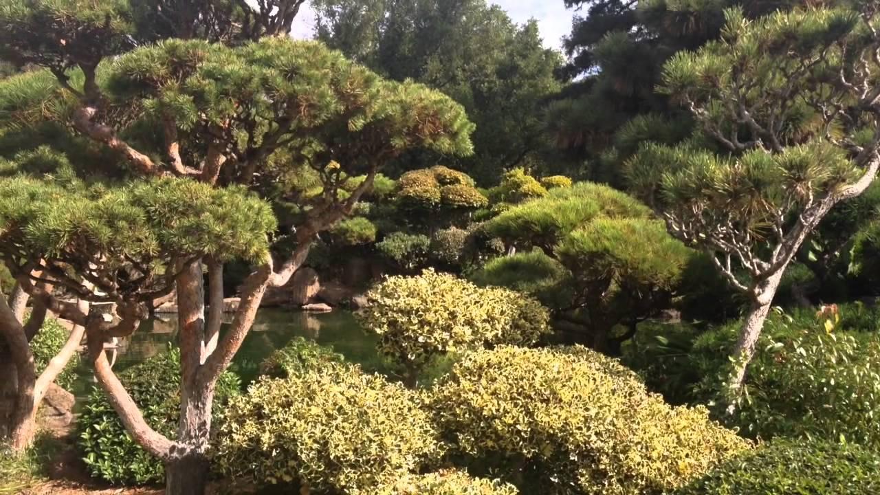 Japanese Garden Hayward CA - YouTube