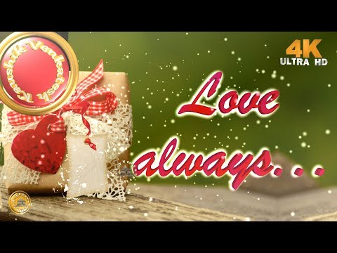 Love Quotes for Him/Her, 4K Video, Wishes, Whatsapp Status