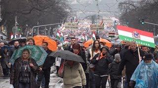 Historyczny marsz w stolicy Węgier z udziałem Polaków!