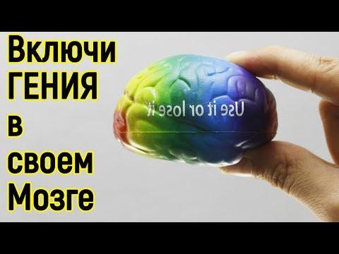 Эти 10 секретов мозга помогут стать тебе Миллионером и даже Гением – Как стать умнее и развить мозг