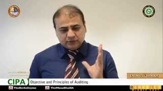 Certified Islamic Professional Accountant | Auditing | Objective and Principles of Auditing