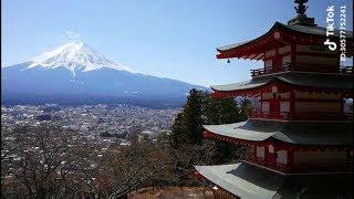 [ Tik Tok Japan ] I Love Japanese Style #43