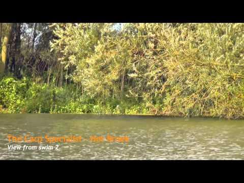 The Carp Specialist - Het Broek - Carp Lake in The Netherlands