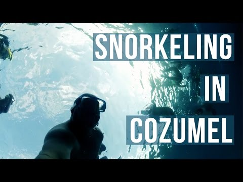 SNORKELING IN COZUMEL, MEXICO 🇲🇽 | Travel Vlog [HD]