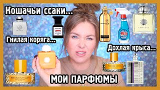 МОЯ КОЛЛЕКЦИЯ ПАРФЮМОВ I Vilhelm parfumerie, Hermes, Amouage