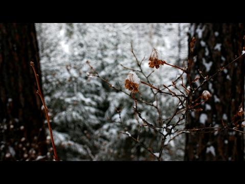Winter ( Originally By Kina Grannis ) By Nicole Zefanya // NIKI