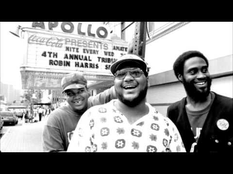De La Soul Ft. Mike D & Ad Rock - SQUAT! (AOI - MOSAIC THUMP)