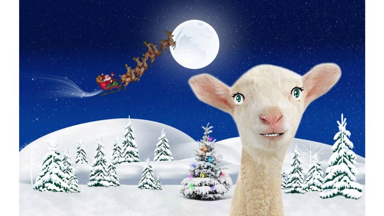 Поздравления в год овцы