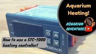 Best way to heat your aquarium - how to set up a heating controller