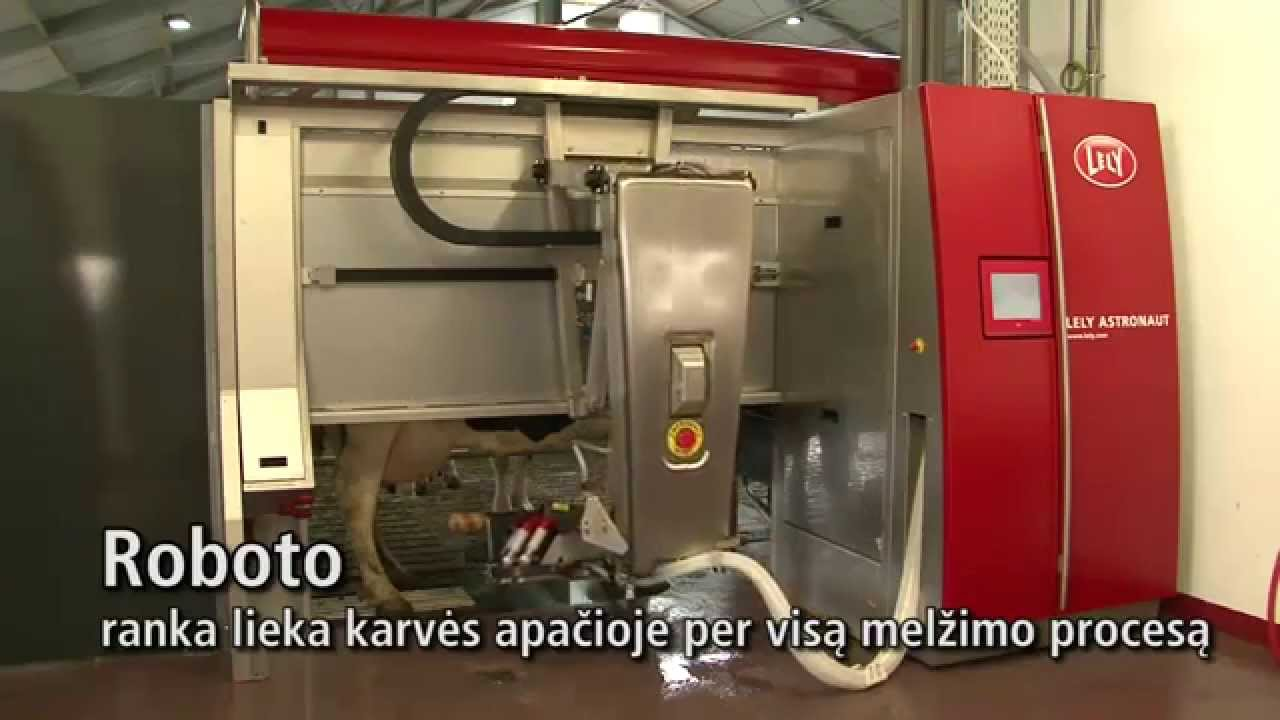 Lely Astronaut A4 - Milking robot arm (Lithuanian)