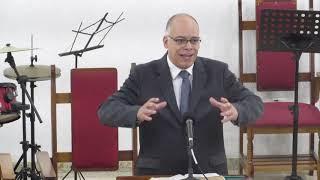 A Galinha e os Pintinhos - (Lc 19.41-44; Mt 23.37-39)