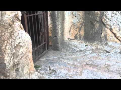Socratis In Prison