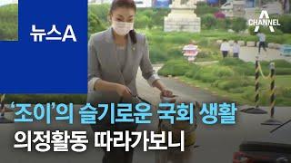 김예지-조이 슬기로운 국회 생활…의정활동 따라가보니 |…