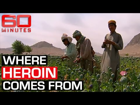 Inside Afghanistan's booming opium trade   60 Minutes Australia