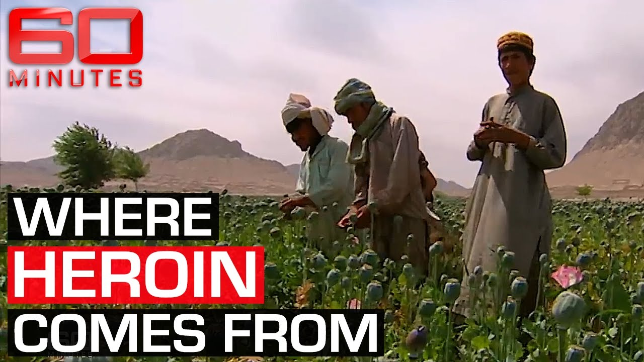 Inside Afghanistan's booming opium trade | 60 Minutes Australia